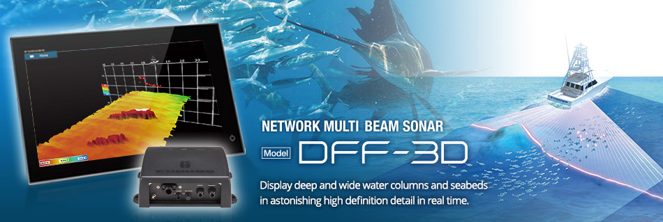 Network Multi-beam Sonar DFF-3D